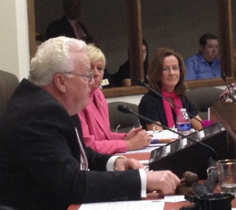 Will County Executive Larry Walsh cast the tie-breaking vote Thursday in favor of a tax levy increase.