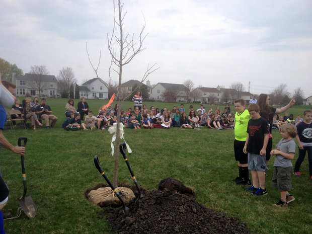 Students wait to start pouring dirt around the base of the new tree.