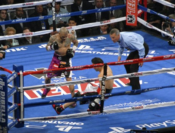 Puerto Rican native Miguel Cotto (39-4, 32 KOs), in his second fight with trainer Freddie Roach, unanimously and decisively beat ...