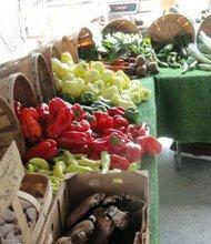 The Joliet Farmers Market, held every week on Chicago Street and Van Buren Plaza in the summer, begins Friday.