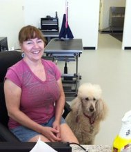Donna DeHeer, owner of Pikaso Pet Spa in Plainfield, brings her standard poodle Amara to work with her every day.