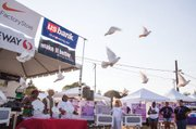 White doves are released in a sign of peace for the third annual Martin Luther King Jr. Dream run.