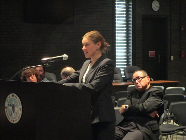 Attorney Ruth Greenwood, of Chicago Lawyers' Committee for Civil Rights Under Law, representing Concerned Citizens of Joliet, makes a point during Monday's meeting of the Joliet Electoral Board.