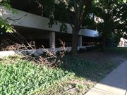An area where landscaping has not been maintained along one of the city's downtown parking garages.
