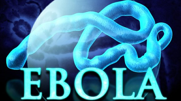 One year ago the world witnessed a public health emergency that dominated headlines for months – the Ebola crisis in ...