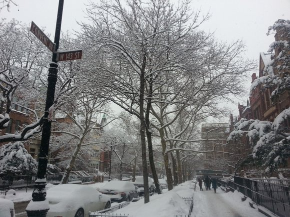 After what many called a mild winter, New York City experiences its first major snowstorm of the season scheduled to ...