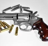 The Romeoville Police Department's gun buy back program will be held from 9 a.m. to 1 p.m. April 11.
