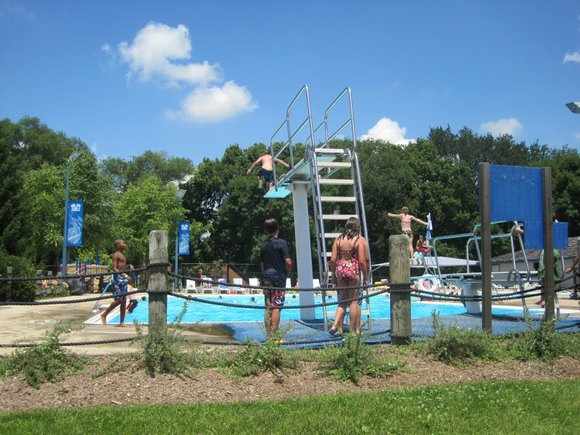 Each of the 128 pools and 12 bathing beaches will be checked to ensure they're in compliance with the Illinois ...