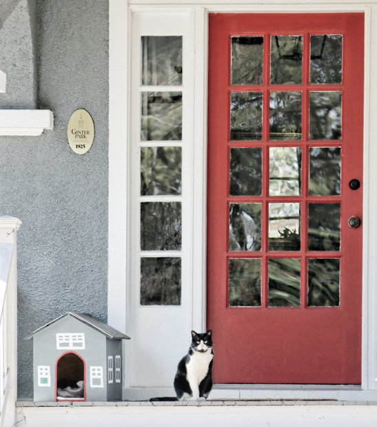 They say cats are curious, so it wasn't surprising to see this furry feline left the cozy confines of his tiny house on the porch of this home to keep an eye on the neighborhood. Location: The 3700 block of Moss Side Avenue in the Ginter Park community on North Side.