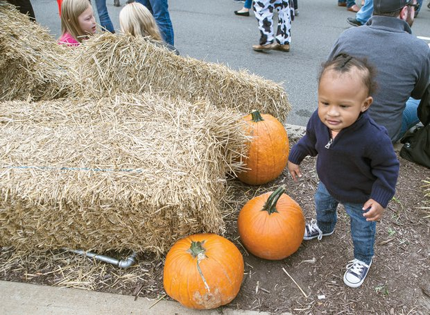 Cute little pumpkin// 