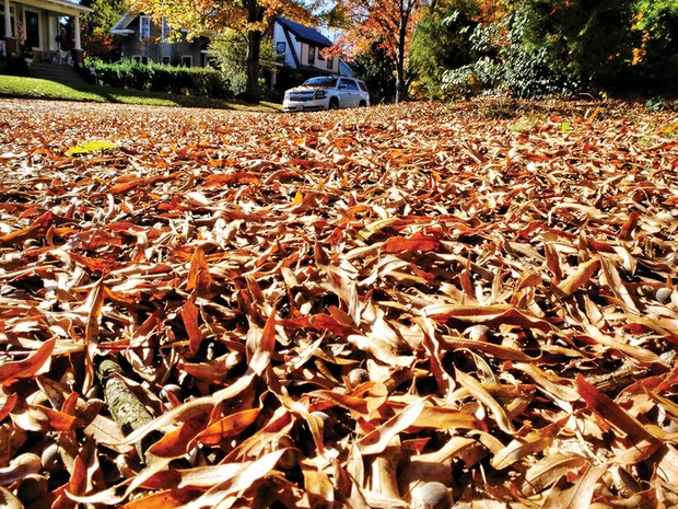 Leaves blanket the grass at 42nd Street and Stonewall Avenue in South Side — a familiar autumn scene in many areas of Richmond. Rake and blower time has arrived. In a move to save money, the city has pushed back its leaf collection and will limit it to one pass. The start date:  Monday, Nov. 30. The collections will begin in neighborhoods in the North Side, adjacent to Downtown and in the near West End and continue across the city through early February. The work will be delayed if there are snowfalls.