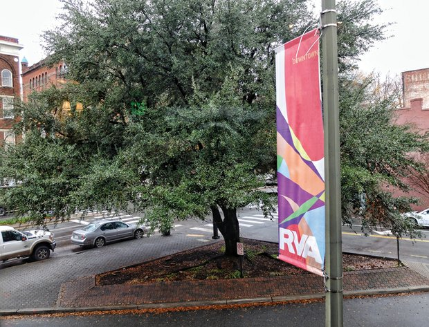 This leafy oak tree growing on a triangle plot Downtown at Broad Street, Adams Street and Brook Road is the subject of a petition drive by people who don't want it to be cut down for the monument honoring renowned Richmond businesswoman Maggie L. Walker.