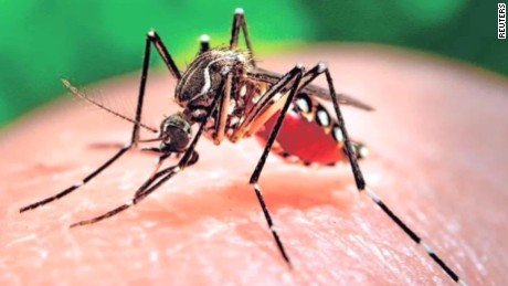 The Florida Department of Health said it is investigating a possible non-travel related case of Zika virus in Miami-Dade County.