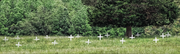This cemetery is the burial ground for slaves who worked on the property decades before it was used for the education of African-American youths.