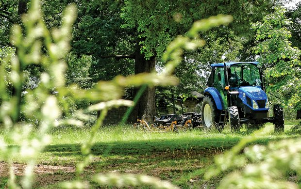 High grass gets sheared Wednesday at Bryan Park in the North Side. This is one of the four parks that a team of inmates from the Richmond Justice Center will keep groomed under an agreement between City Hall and Sheriff C.T. Woody Jr. The other three parks are Byrd, Chimborazo and Forest Hill.