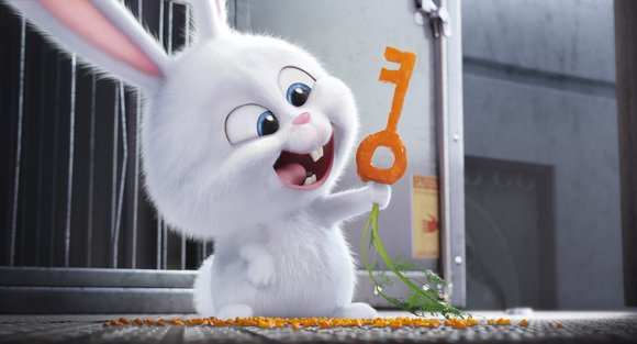 """""""The Secret Life of Pets"""" is the new animation family comedy from Illumination, the company that unleashed those clever little ..."""