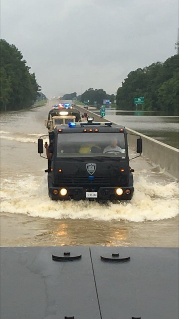 They're out in force, patrolling in jon boats, motorboats and even canoes through south Louisiana's new, flood-made waterways, saving cats, ...