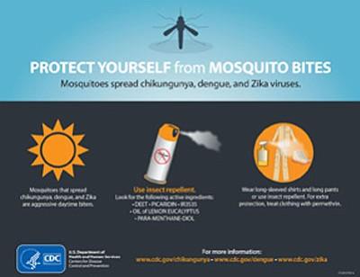 Zika virus is still being transmitted in many vacation hotspots