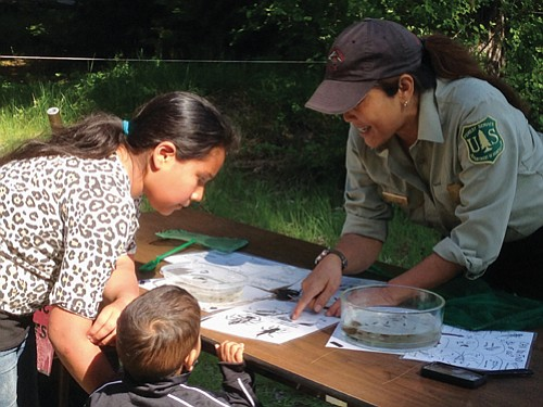 The Mount Hood National Forest is hosting annual free youth fishing clinics, Saturday, May 13 for the Barlow Ranger District ...