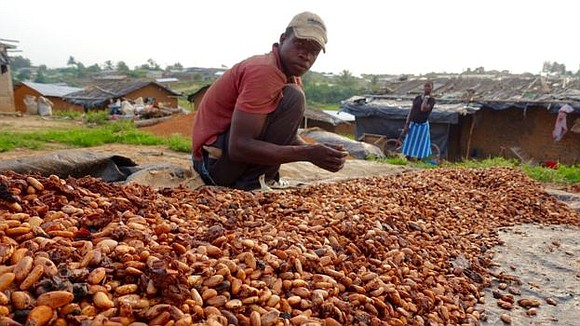 Troubles in the Ivory Coast have pushed the price of cocoa to its highest level in five years.