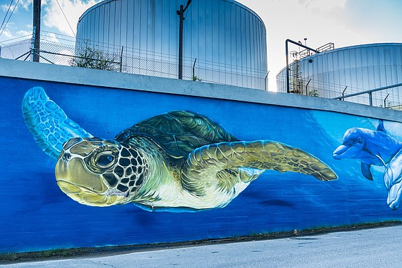 "A 260-foot long concrete wall on JW Peavy Drive has been transformed by a colorful mural, ""Turtle Soup,"" recently commissioned ..."