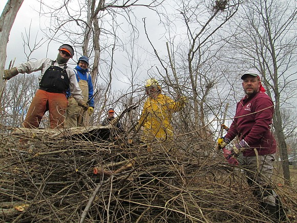 If you love nature and you want to help the environment, consider joining the Forest Preserve of Will County by ...
