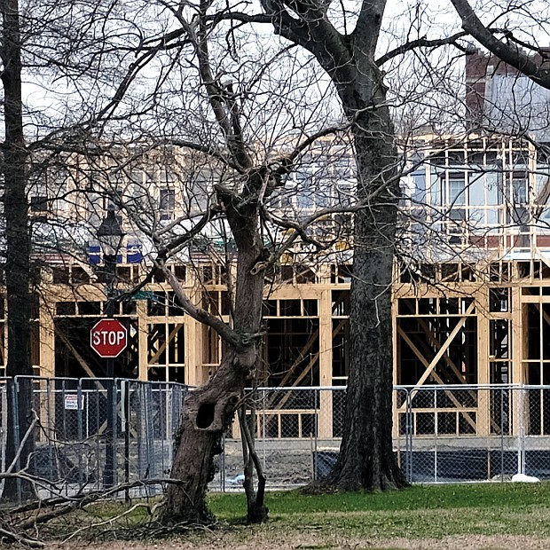 Workers are moving forward to create a $33 million apartment complex on a 2½-acre block in Jackson Ward, despite recent weather challenges. This view from 2nd and Duval streets shows the wooden framework of the 146 new apartments under construction on the site. (Sandra Sellars/Richmond Free Press)