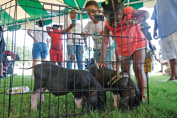 Fun at RVA Community Fun Day/