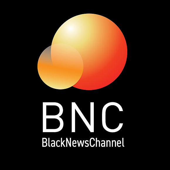 In a joint teleconference broadcast live from the Four Season's Hotel in New York's Financial District, the Black News Channel ...