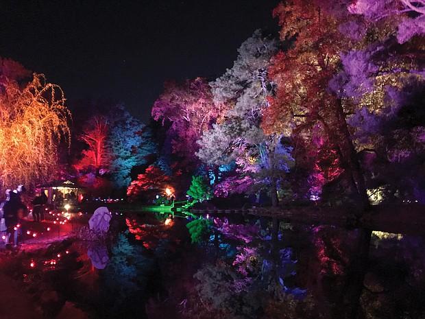 'Garden Glow' in Japanese Garden at Maymont