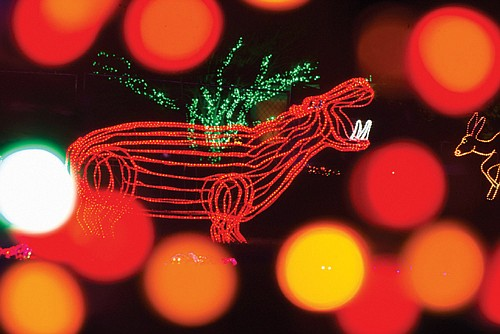 On Friday and Saturday, Nov. 22-23, the Oregon Zoo will host BrewLights: a ZooLights experience just for the 21-and-over crowd.