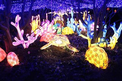 Bronx Zoo Christmas Lights 2020 PHOTOS: Bronx Zoo lights up for the holidays | New York Amsterdam