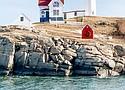 The Nubble Lighthouse in Cape Neddick, Maine