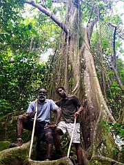 O'Neil and O'Neil Jr. Rainforest Tours