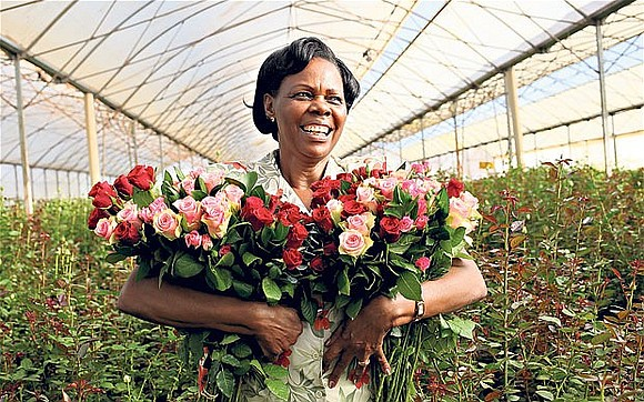 It was inevitable during a lockdown that sales of Kenya's flower exports would dry up as buyers make fewer impulse ...
