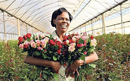 Our spirits were buoyed when we read the story this week by Trice Edney Wire-Global Information Network about flower growers ...