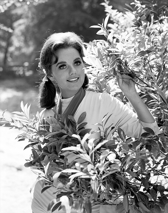 """Dawn Wells, who played the loveable castaway Mary Ann Summers on """"Gilligan's Island,"""" died in Los Angeles on Wednesday from ..."""