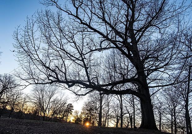 Sunset in Byrd Park