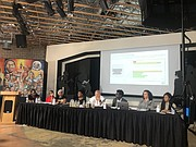 A panel of community leaders and activists participated in the BWI Town Hall on Friday, July 16.